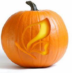 CDF pumpkin